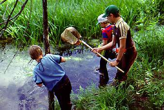 Children playing in wetlands