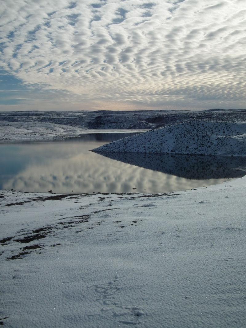 Winter in the Tundra