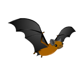 Hinterland's Hangout Bat