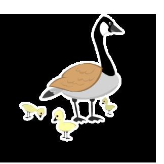 Hinterland's Hangout Goose