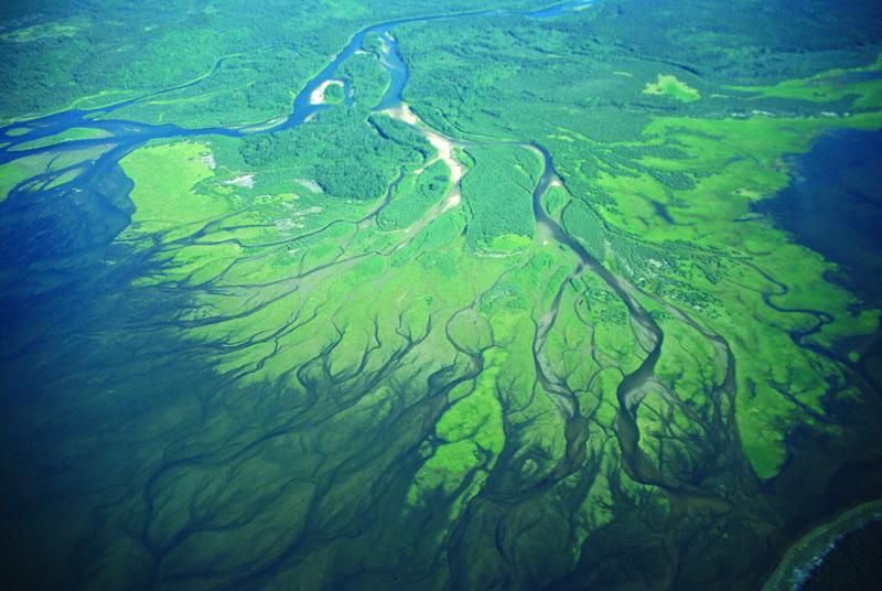 Nisutlin National Wildlife Area